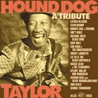 &lt;span&gt;Hound Dog Taylor:  A Tribute&lt;/span&gt;