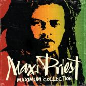 "New Double CD ""MAXIMUM COLLECTION""  June 26, 2012"