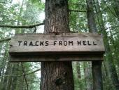Tracks from hell..http//www.facebook.com/pages/Rebel-Bran/405035751284http//rebelbran.blogspot.com/