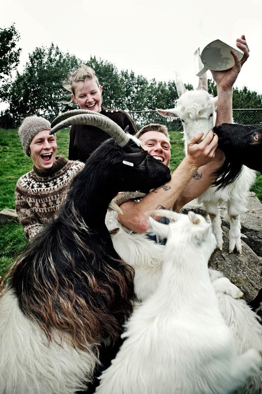 mm with many hungry goats. photo by Hrur Sveinsson in My Photos by 