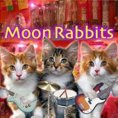 Photo of moon Rabbits