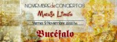 Photo of Bucfalo
