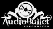 Photo of audio bullet recordings