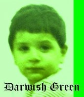 Photo of DarwishGreen