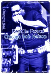 Photo of Chicago Bob Nelson